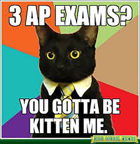 7 Stages of an AP Exam