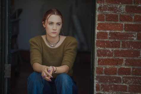 Lady Bird provides an artistic, cinematic view of family life