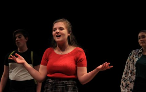 Cabaret troupe debuts with miscast concert