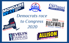 Democrats in NY's 17th district fight for open seat in Congress
