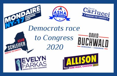Democrats in NY
