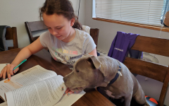 11-year old Abigail (Abby) Kaye, the daughter of eleventh grade Class Dean Shelly Kaye, studies at home accompanied by her family's dog. Because both of Abby's parents are teaching in person this fall, she's had to take on more responsibility making sure she and her brother Gavin are present for their online classes. Kaye said,