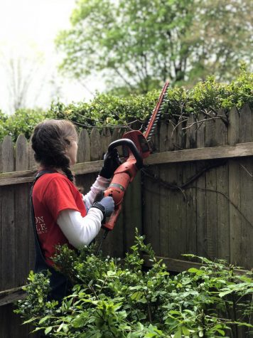 Senior Carly Grizzaffi trims hedges at an event for Mission Possible, a community service initiative she co-founded.